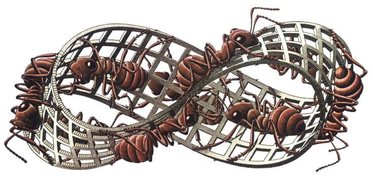 240698-artwork-M._C._Escher-insect-ants-grid-3D-white_background-Mobius_strip.jpg