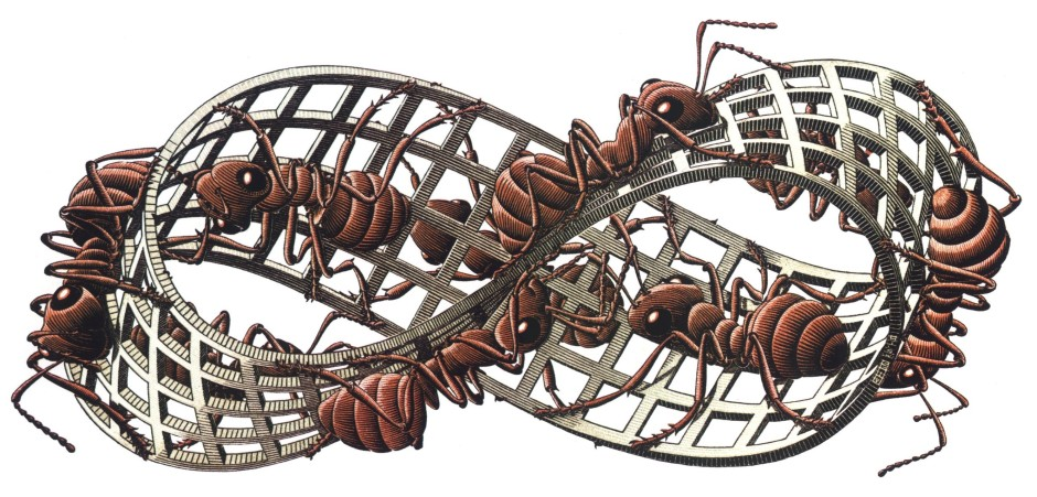 240698-artwork-M._C._Escher-insect-ants-grid-3D-white_background-Mobius_strip.jpg