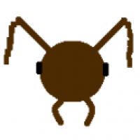 AntHead2