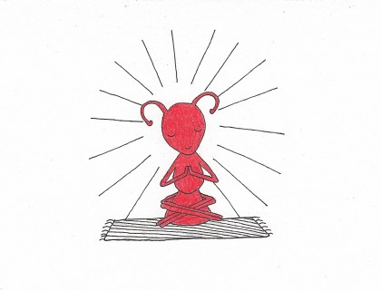 Fig 4 Buddhist ant