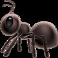ant_1f41c